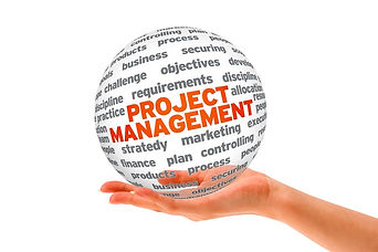 Serialization Project Management