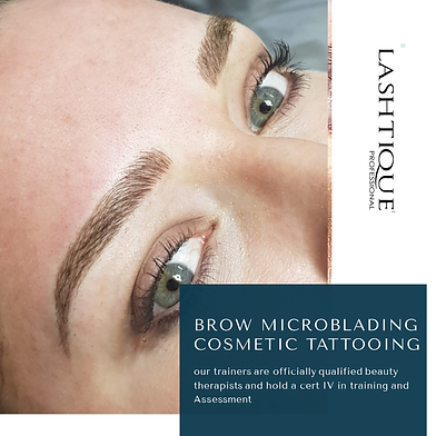 Ombre Brow Courses www.lashtiqueprofessi