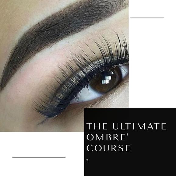 Ombre Brow Course www.lashtiqueprofessin