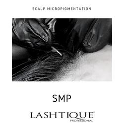 SMP course _www.lashtqiqueprofessional