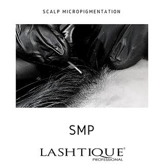 SMP course _www.lashtqiqueprofessional.c