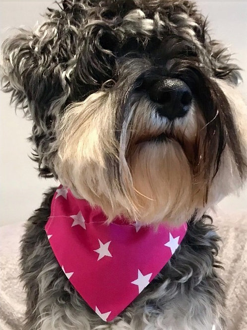 Dog Bandana Big Pink Stars by Woof Stuff Dublin Ireland