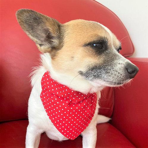 Dog Bandana Red Dotty for Dots by Woof Stuff Ireland