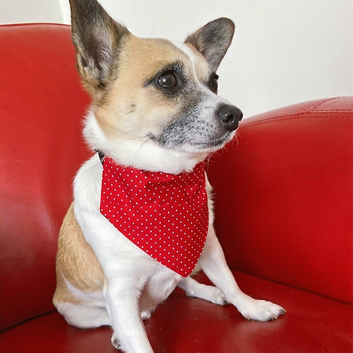Dog Bandana Red Tiny Dot  by Woof Stuff Dublin Ireland