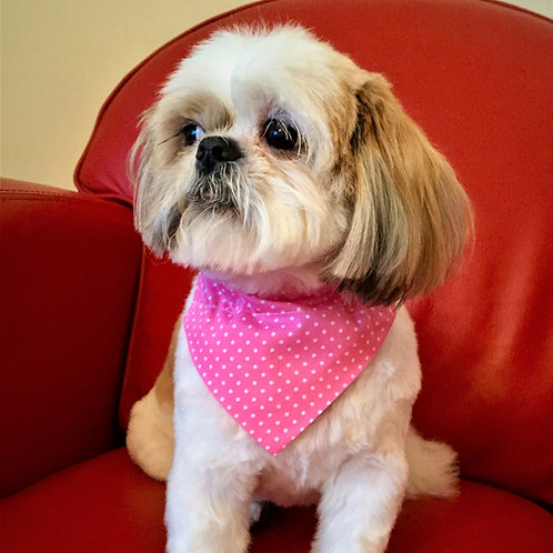 Dog Bandana Personalized Pink and White Dotty Delight by Woof Stuff Ireland
