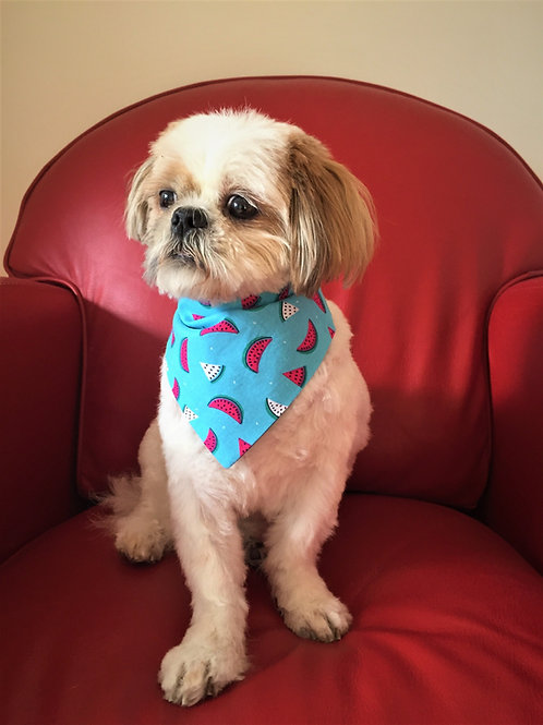 Dog Bandana Melon pop fastner style by Woof Stuff