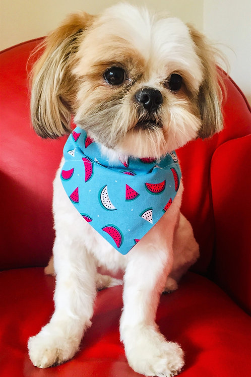 Dog Bandana Magic Melon by Woof Stuff