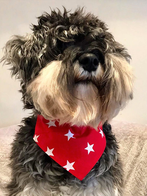 Dog Bandana Big Red Star by Woof Stuff Dublin Ireland