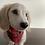 Thumbnail: Dog Bandana Christmas Red and Gold Tartan by Woof Stuff Dublin Ireland