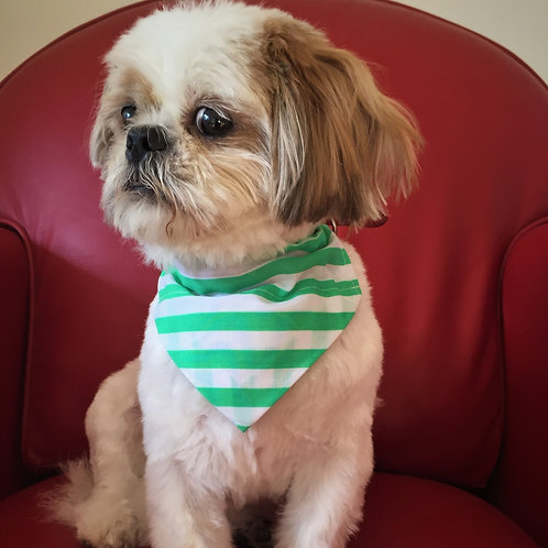 Dog Bandana County Colours Fermanagh by Woof Stuff Ireland