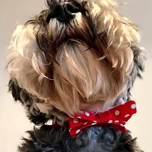 Dog Dickie Bow Red Polka Dot by Woof Stuff Dublin Ireland