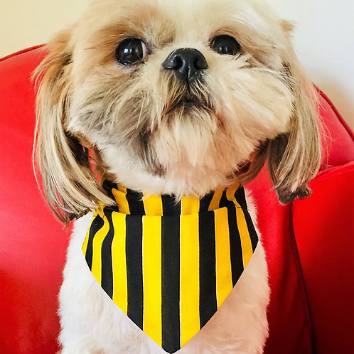 Kilkenny County Colours Dog Bandana by Woof Stuff Ireland