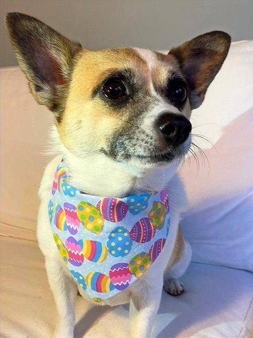 Dog Bandana Easter Eggs Everywhere by Woof Stuff Dublin Ireland