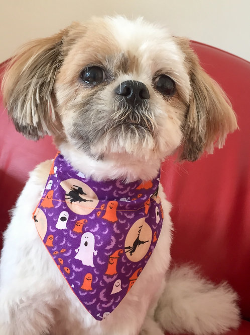 Dog Bandana Halloween Witches by Woof Stuff