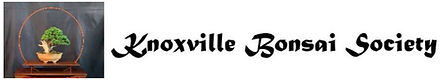 Knoxville BS logo.jpg