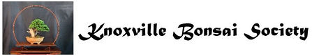 Knoxville BS logo.jpg