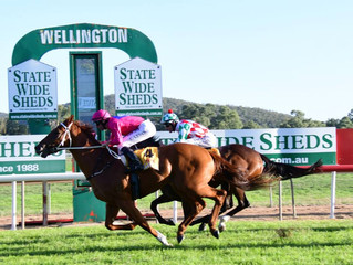 Superium wins the Wellington Boot