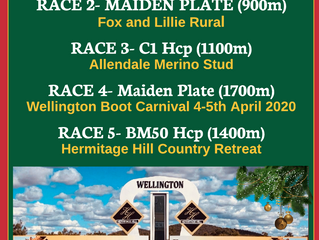 Boxing Day Races at Wellington
