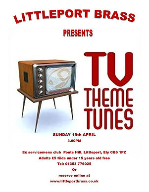 tv theme poster.jpg