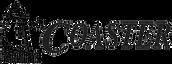 Coaster Logo 2016.png