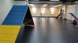 agiity room (2)