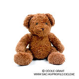Brown Plush Toy Bear