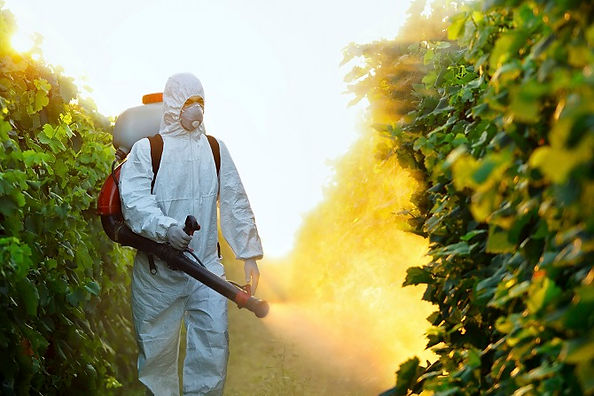 Child-Exposure-To-Pesticide-Leads-To-Poo
