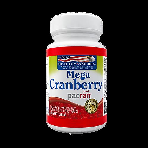 Mega Cranberry
