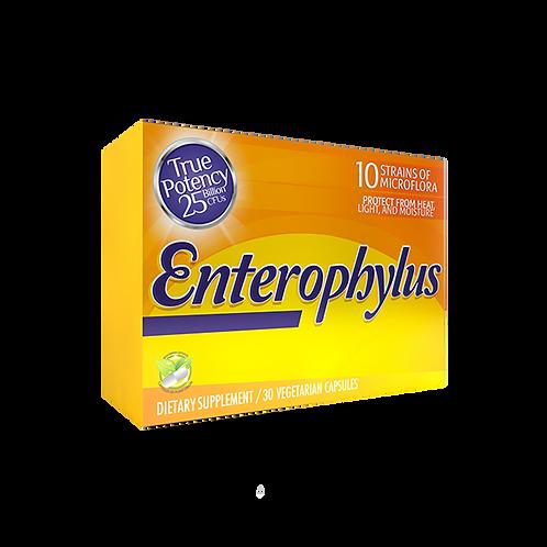Enterophylus x 30 Cap