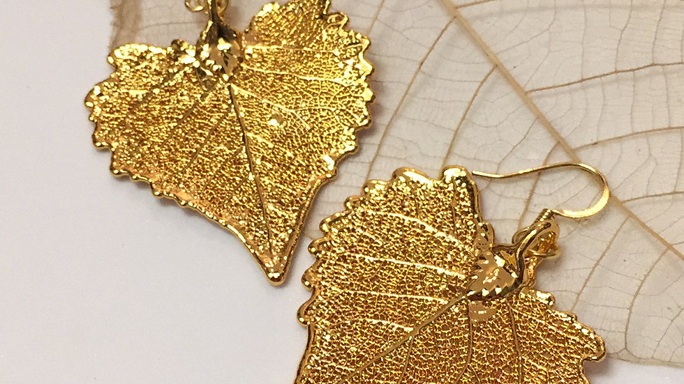 Forever Leaves 'COTTONWOOD' earrings. GOLD A236