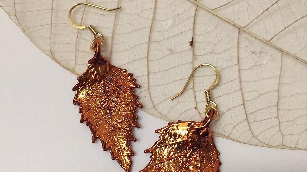Forever Leaves 'BIRCH' earrings. COPPER A248