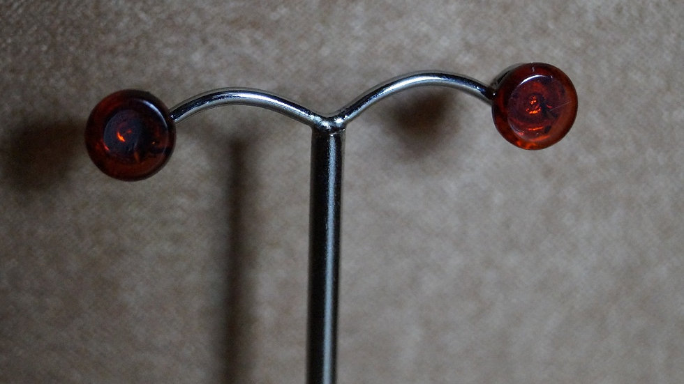 Baltic Amber Flat Stud Earrings A281
