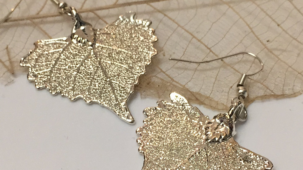 Forever Leaves 'COTTONWOOD' earrings. SILVER A241