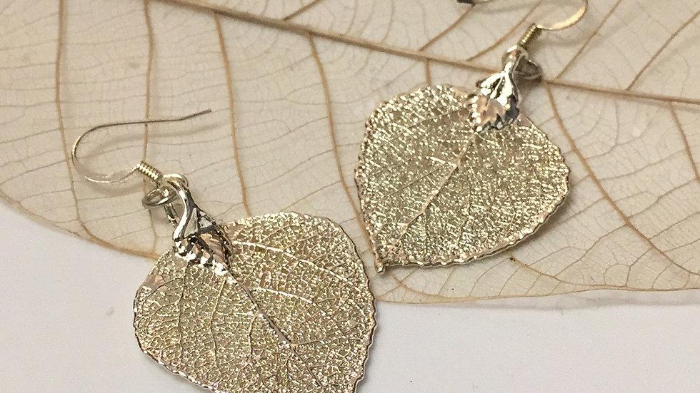 Forever Leaves 'ASPEN' earrings. SILVER A247