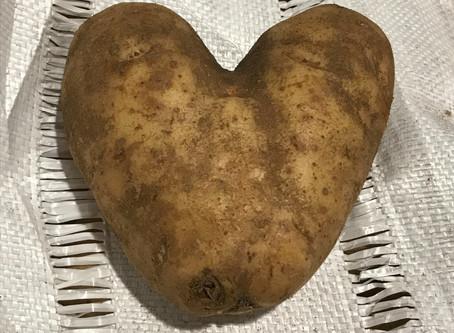 My Thursday Thing: A Loving Potato