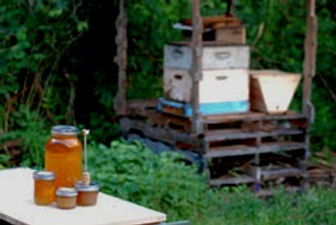 home-apiary-sm_edited.jpg