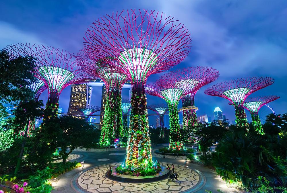 "Парк ""Сады у залива""Сингапур"