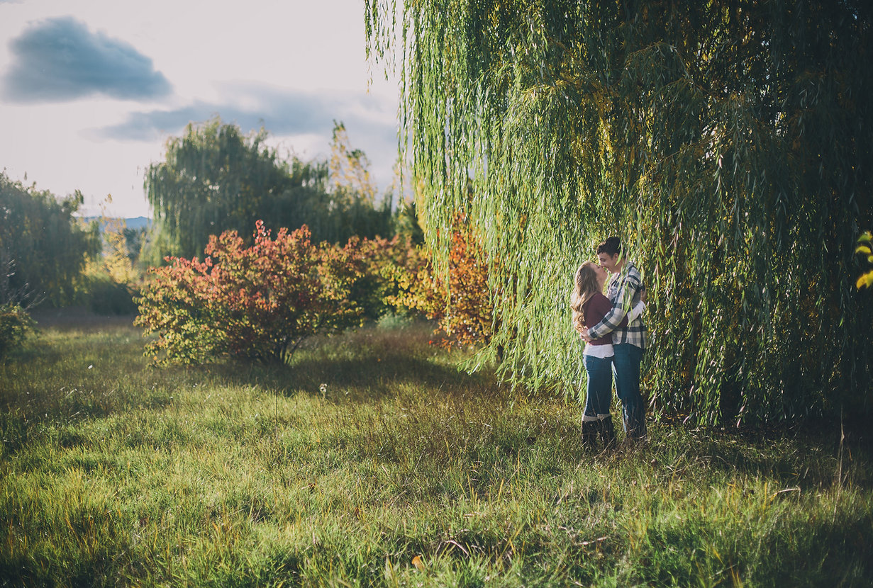 Relationships and Marriage The Divine Reflection Willow