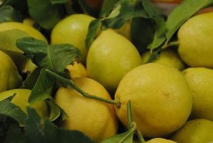 Citron oudard Les Jardins de la Frolle