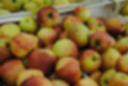 Pomme Jonagold Les Jardins de la Frolle