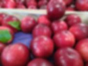 nectarine direct producteur 86 les jardi