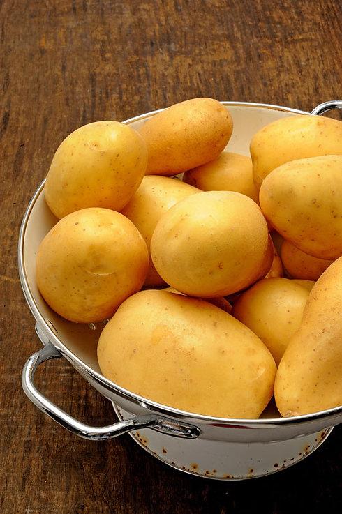Pomme de terre Frolle