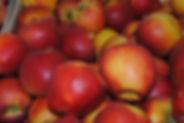 Pomme pilot porducteur 86 les jardins de