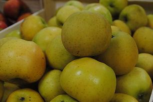 Pomme Belchard Chantecler Les Jardins de
