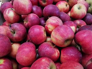 Pomme Elstar .jpg