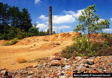 Arsenic chimney at Devon Great Consols. Photograph by Barry Gamble © Cornwall Council