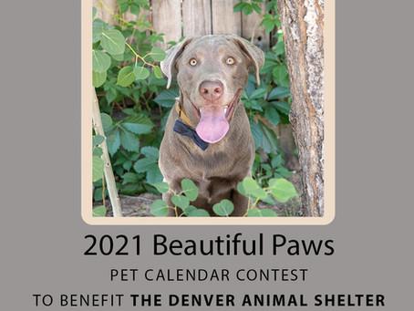 2021 Pet Calendar contest: Beautiful Paws