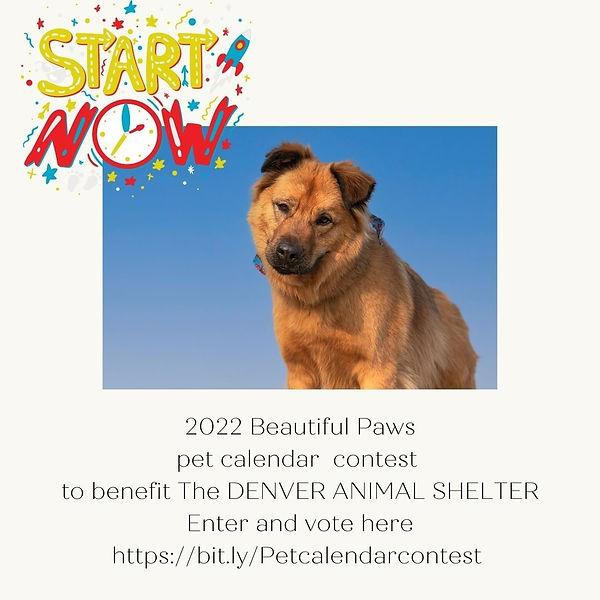 Beautiful Paws pet calendar 2022.jpg