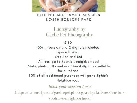Gaelle pet photography fall sessions to benefit Sophie's neighborhood.