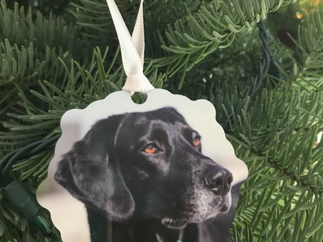 Beautiful metal ornament with the print of your dog!